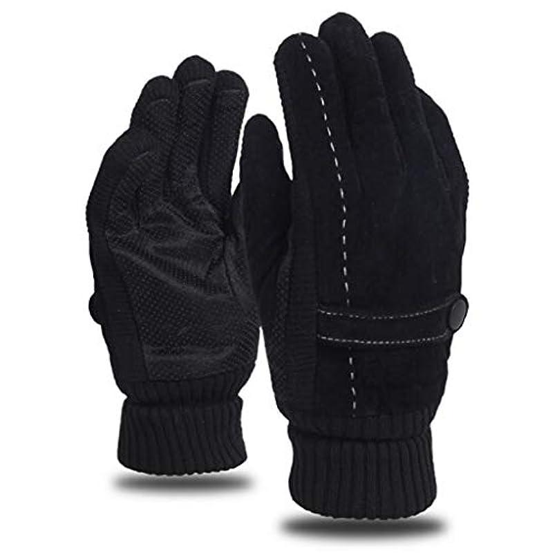 修道院計算軌道レザーグローブメンズウィンライディングプラスベルベット厚手暖かいドライビングアウトドアオートバイ防風コールドノンスリップメンズコットン手袋 (色 : 黒)