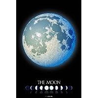 スターリーテイルズ the Zodiac by KAGAYA 1000ピース THE MOON -月の世界-【光るパズル】 (50cm×75cm、対応パネルNo.10)