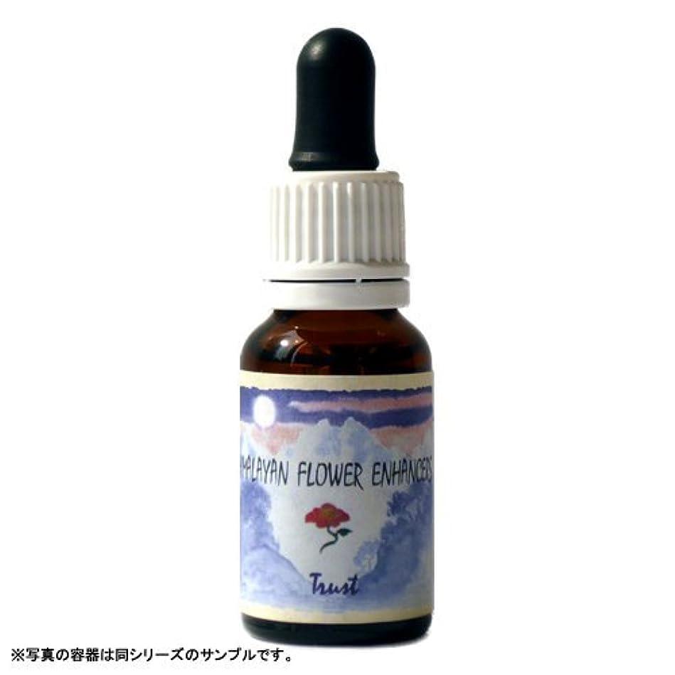 追加する不適切なクラウンヒマラヤン フラワー カイロン 15ml 日本国内正規品