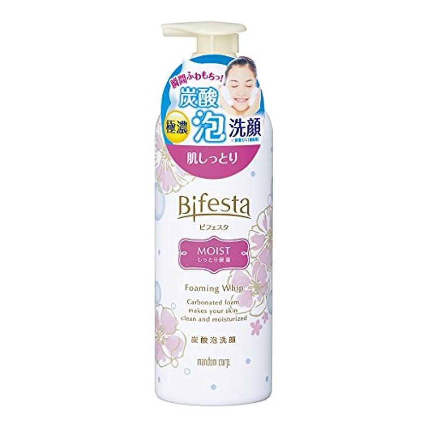 文化保守的動的ビフェスタ 泡洗顔 モイスト 180g