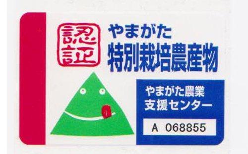 山形県庄内産 特別栽培米認証 ササニシキ 精米 10kg 平成29年産