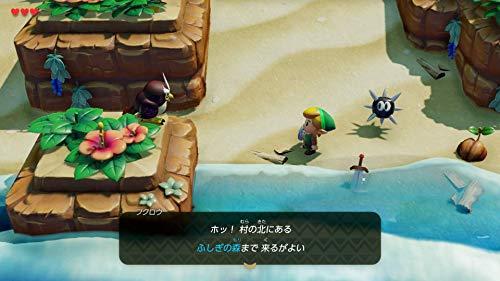 ゼルダの伝説 夢をみる島 -Switch