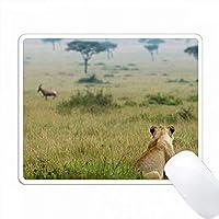 ロンは距離を走っているトピ、ケニアのマサイマラを監視して茎を張る PC Mouse Pad パソコン マウスパッド