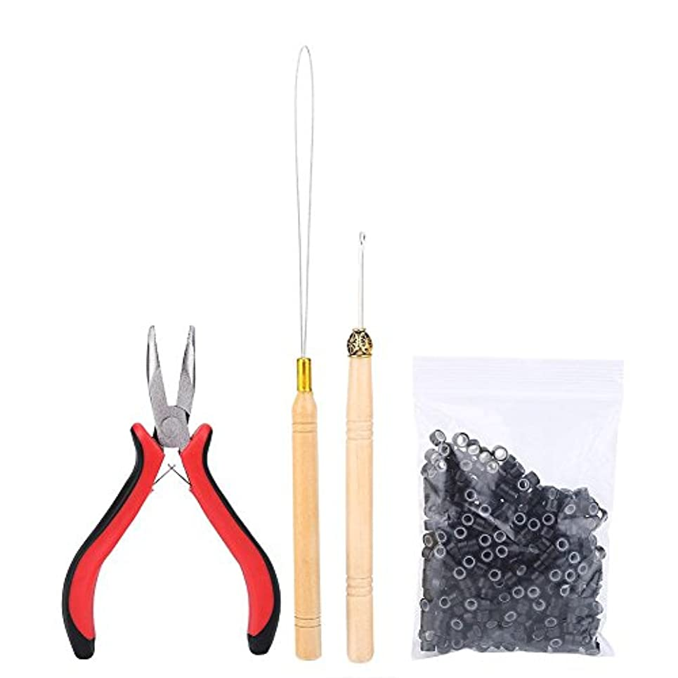 葉を集める偶然の治世ヘアエクステンションキット、ヘアコネクタセットプロのヘアエクステンションツールセットかつらコネクタヘアスタイラーかつらアクセサリー(01#)