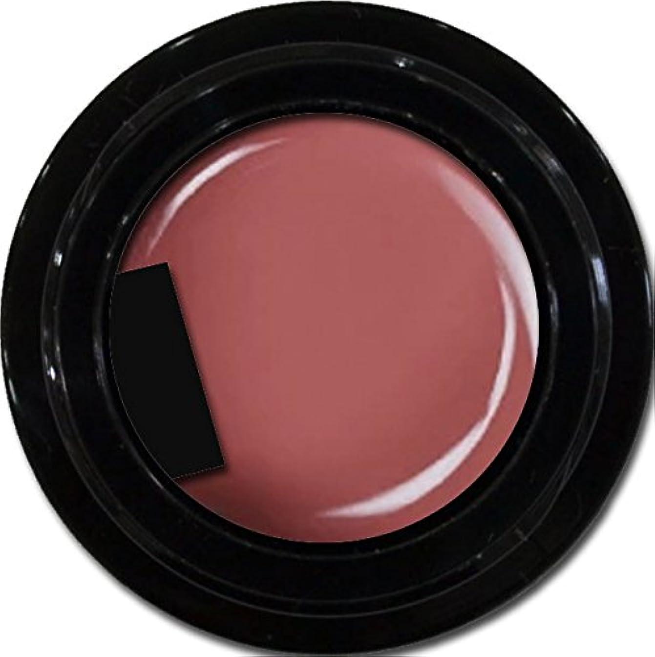 掃く意味のある処方カラージェル enchant color gel M512 PlumSuits 3g/ マットカラージェル M512プラムスイーツ 3グラム