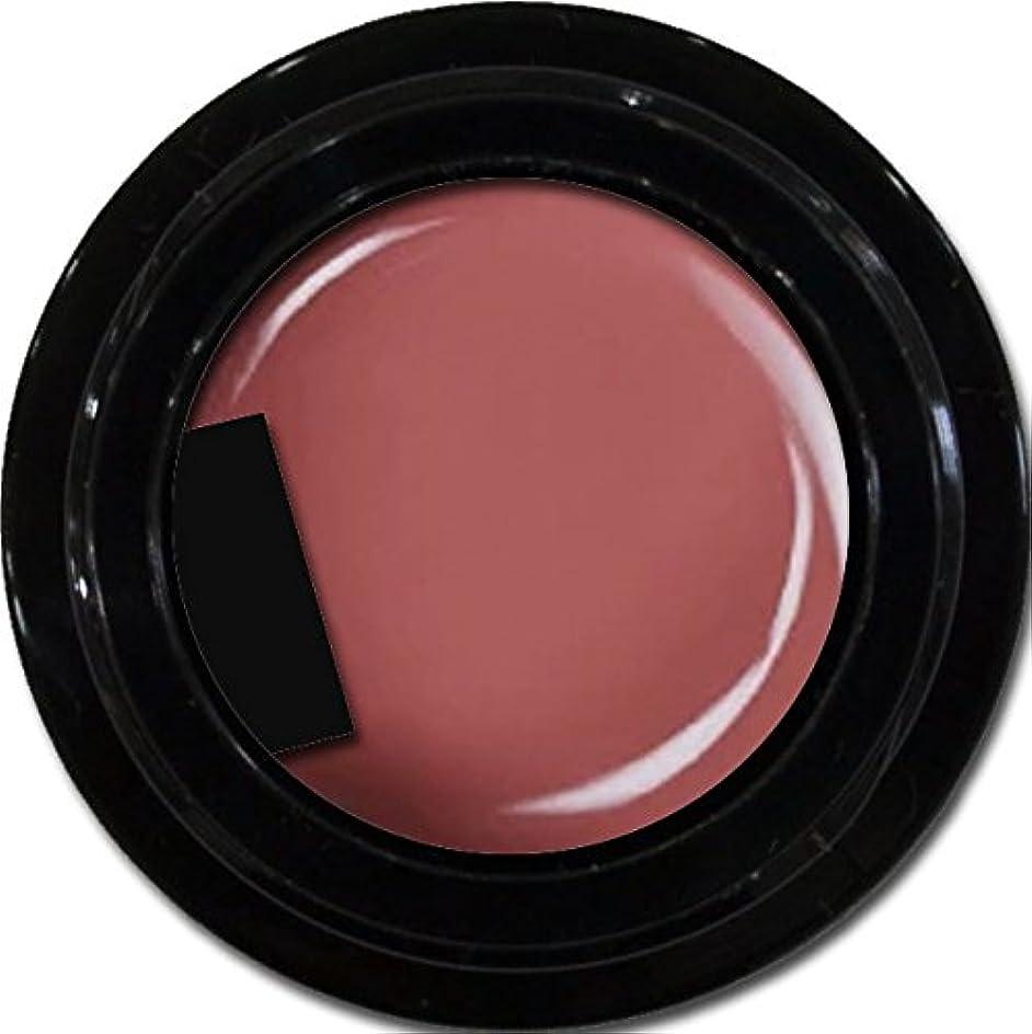 ボルトアレキサンダーグラハムベル克服するカラージェル enchant color gel M512 PlumSuits 3g/ マットカラージェル M512プラムスイーツ 3グラム