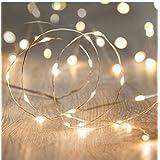 LED Fairy String LightsANJAYLIA 10Ft/3M 30leds Firefly String Lights Garden Home Party Festival Decorations Crafting Battery