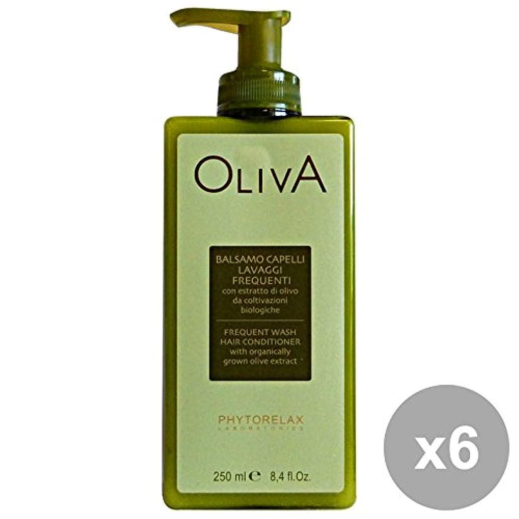 談話任命する浸漬6ファイトレラックスオリーブバームウォッシュを洗う頻度250 ML。髪のための製品