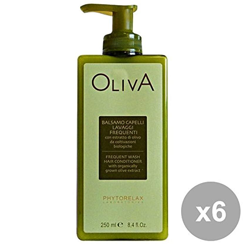 血まみれの敬意を表する平らな6ファイトレラックスオリーブバームウォッシュを洗う頻度250 ML。髪のための製品
