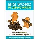 Knock Knock Big Word Flashcards [並行輸入品]