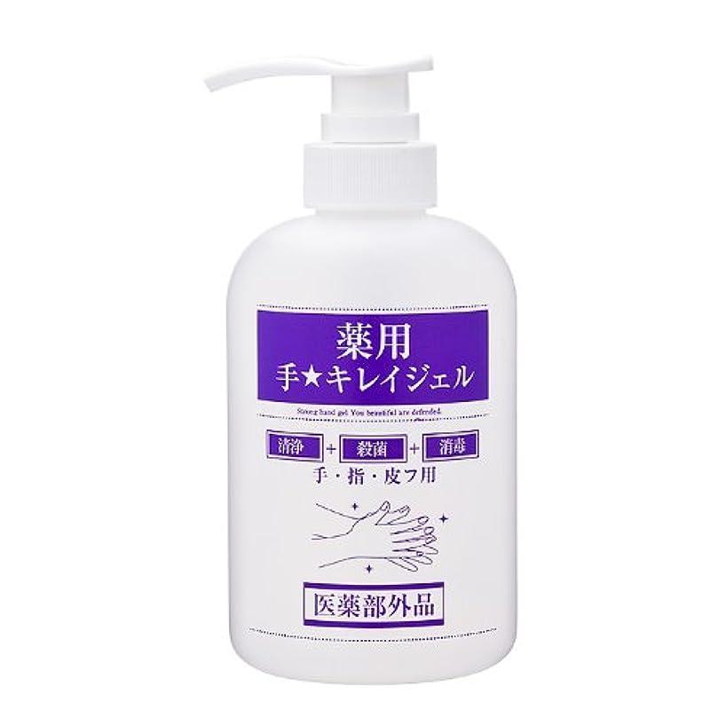 花輪霜履歴書ファインケメティックス 薬用手キレイジェル 500ml