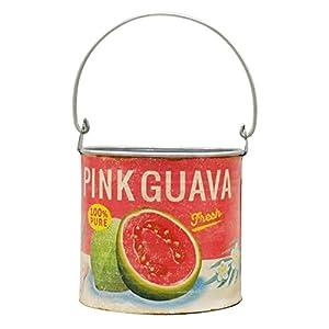 GREENHOUSE サマーブリキ缶ポット ラウンド M ピンクグァバ 3830-C