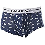 LASHEVAN(ラシュバン)_LASHEVAN(ラシュバン) DRAWERS WHALE_通販_Amazon|アマゾン