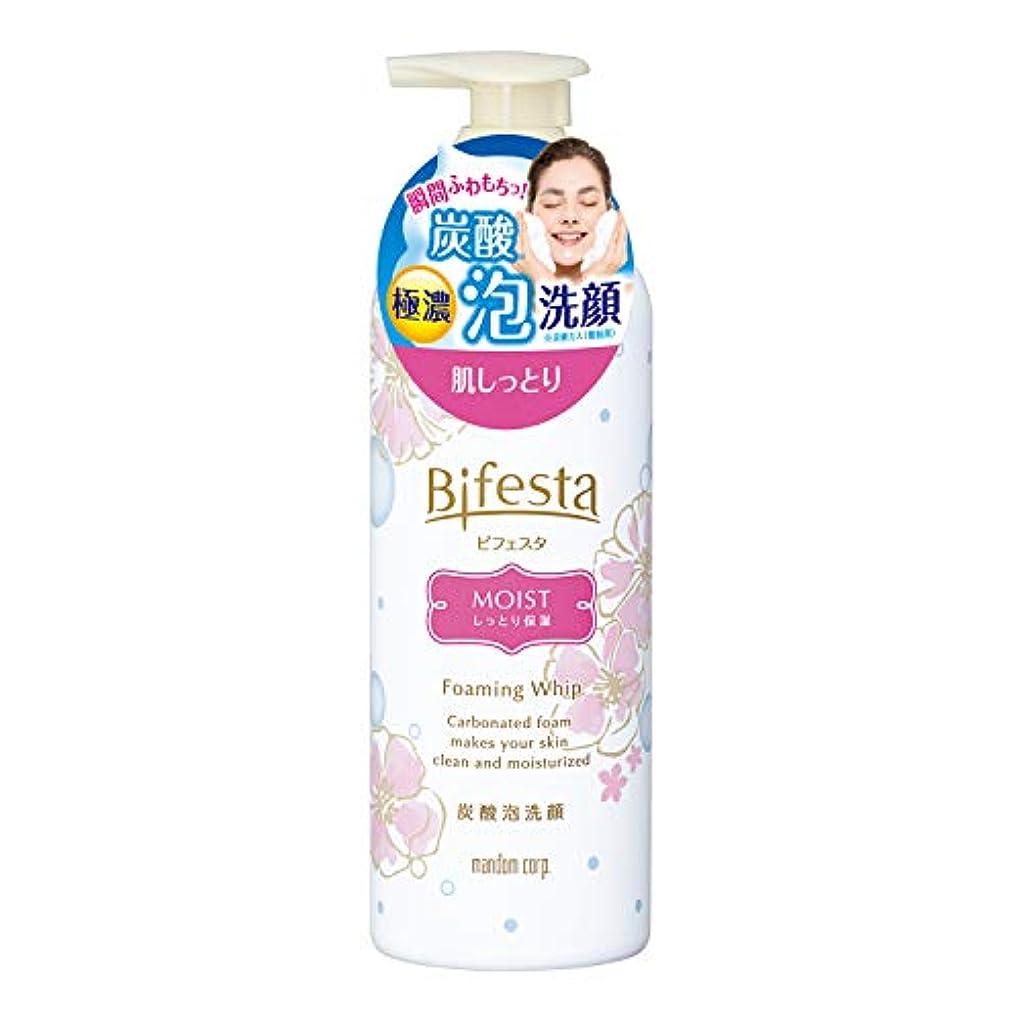 侵入する変色するソフトウェアビフェスタ 泡洗顔 モイスト 180g