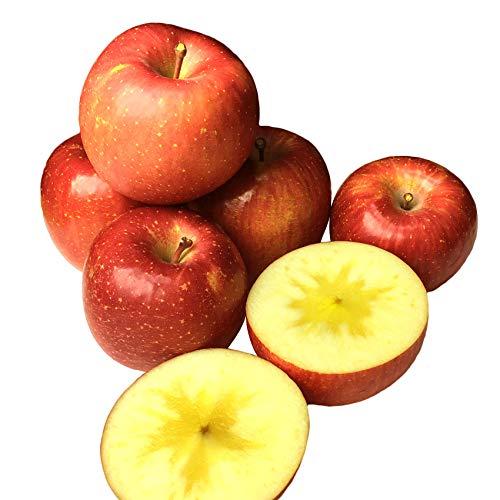 Su-eat 葉とらず 味極み りんご 減農薬 長野県産 (サンふじ 特選 約10キロ)