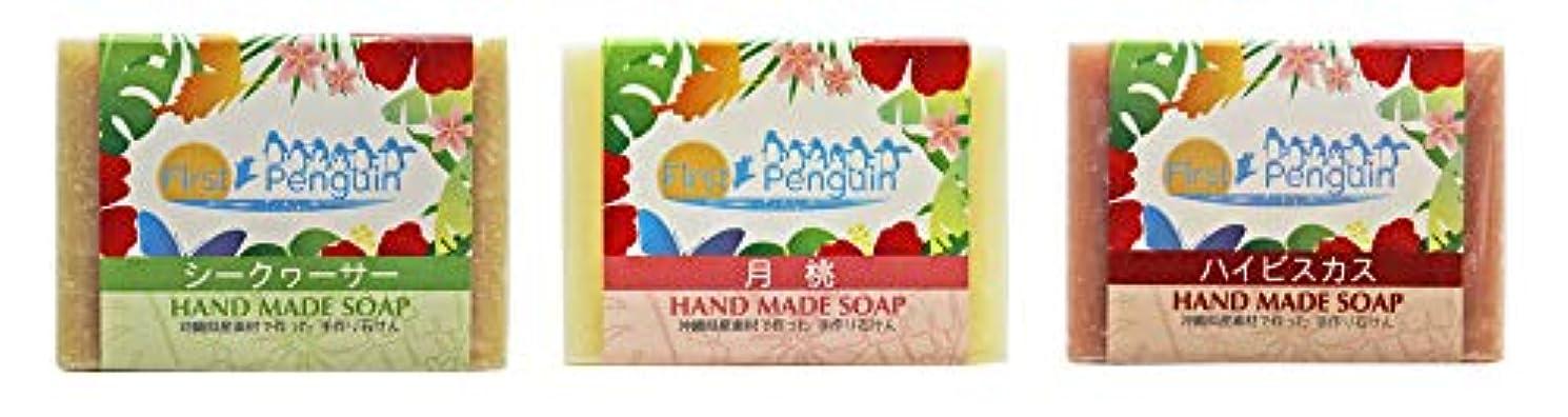 実用的影響を受けやすいです近く手作り洗顔石けん (シークヮーサー、月桃、ハイビスカス)