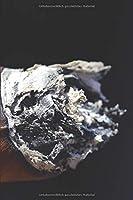 Meine perfekte Zigarre: Logbuch um deine Zigarren zu bewerten ♦ Dokumentiere saemtliche Aromen, Optik, Geschmaecker ♦ Im handlichen 6x9 Format fuer alle Zigarrenliebhaber ♦ Motiv: Zigarrenasche