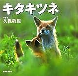 キタキツネ―北国の野生動物