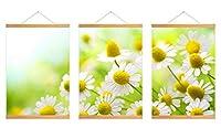 芸術品ズック製印刷吊り絵、内装用品壁のデコレーション吊り絵(カモミール #P003)30x45cm/3
