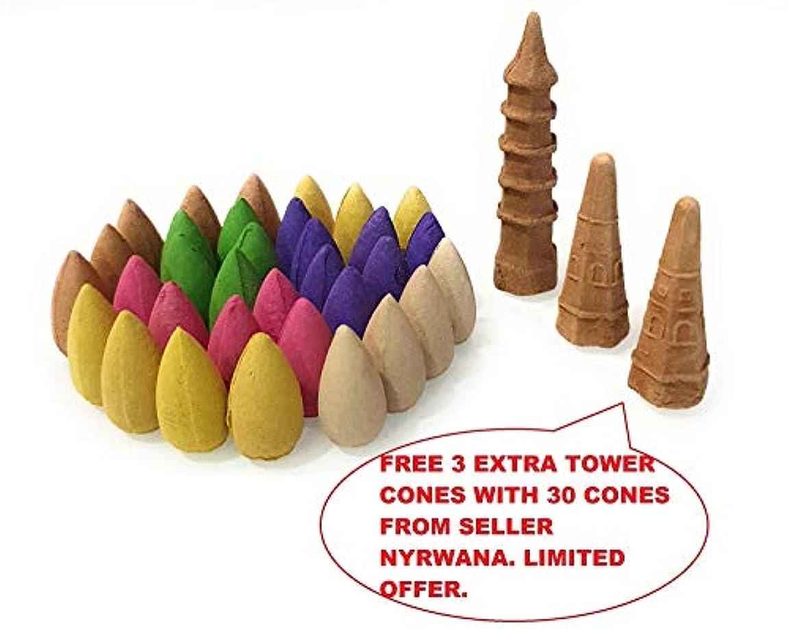 ラメ梨悪性腫瘍Nyrwana Backflow Incense Cones