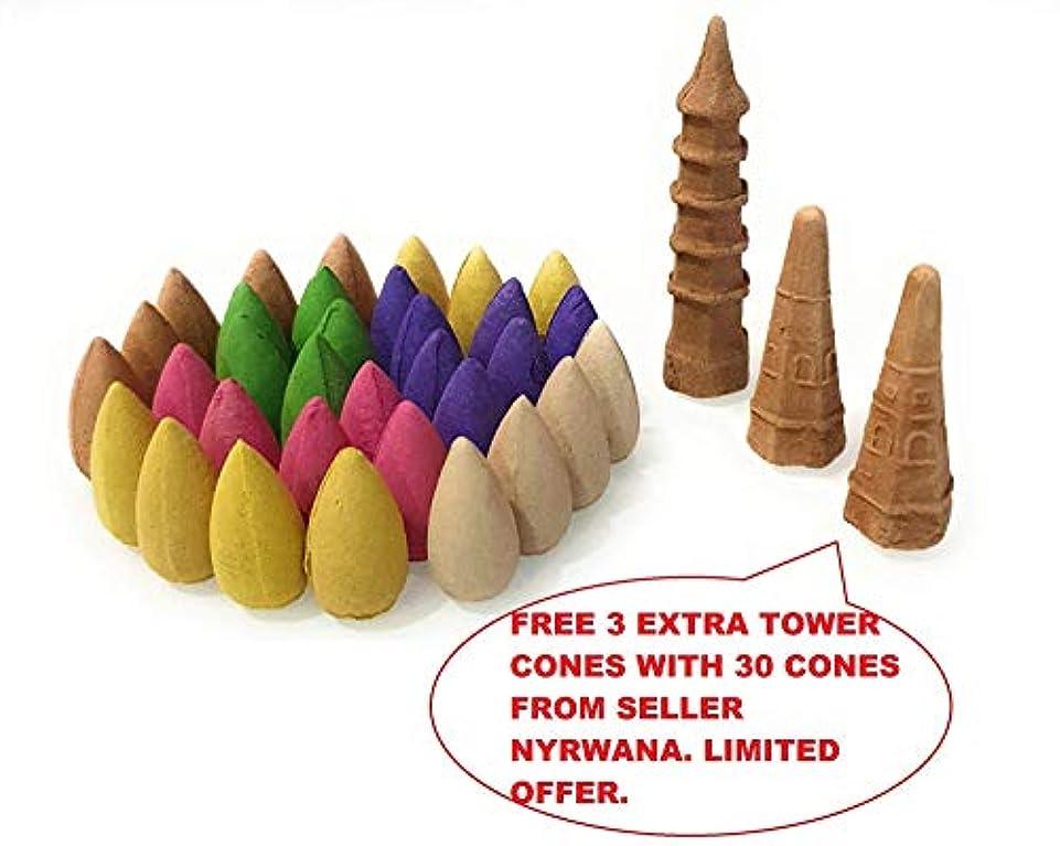 威する忍耐水っぽいNyrwana Backflow Incense Cones