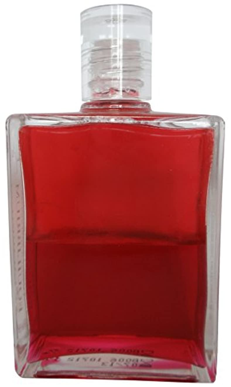 メリー驚くべきいいねB6エナジーボトル オーラーソーマ イクイリブリアムボトル