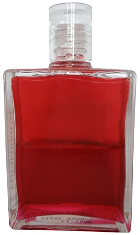 土地定常酸っぱいB6エナジーボトル オーラーソーマ イクイリブリアムボトル