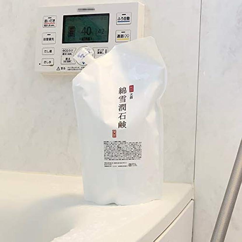 ミット基本的な実現可能性綿雪潤石鹸 700mL 2個セット