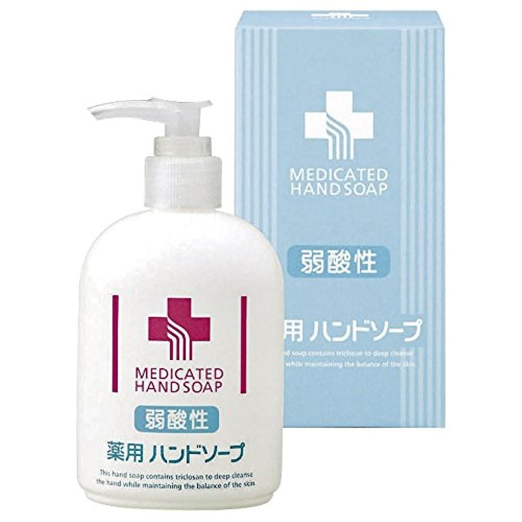 貴重なシャワー刺激する弱酸性薬用ハンドソープ 【こども 肌に優しい 手にやさしい ボトル ポンプ ワンプッシュ インフルエンザ予防 ウイルス除去 手洗い 化粧箱入り 300】