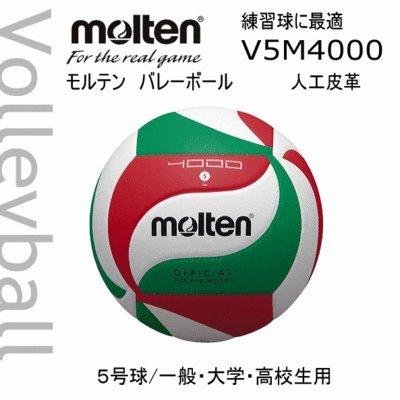 バレーボール4000 5号 V5M4000