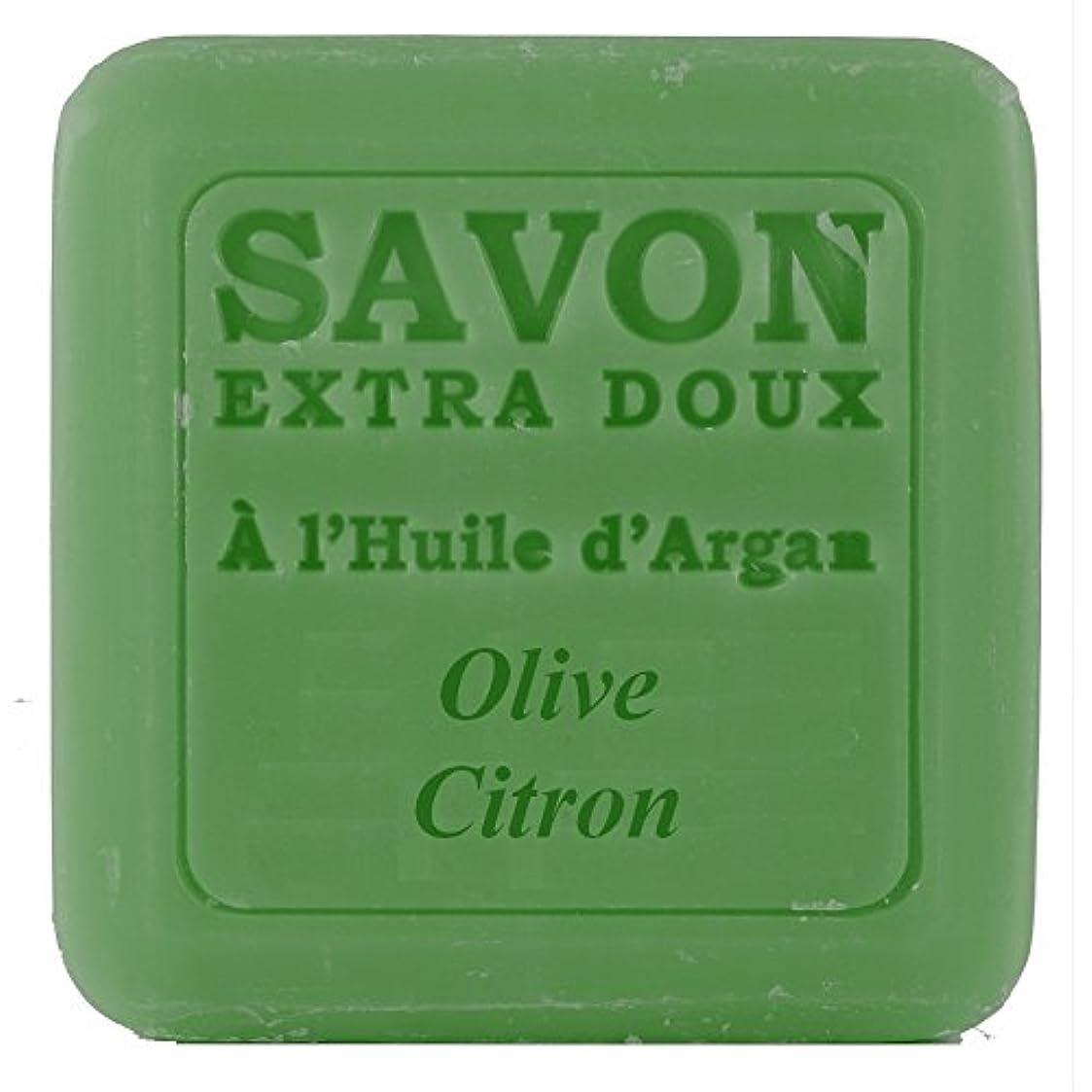 高速道路来てドリルPlantes&Parfums [プランツ&パルファム] アルガンオイルソープ100g オリーブレモン