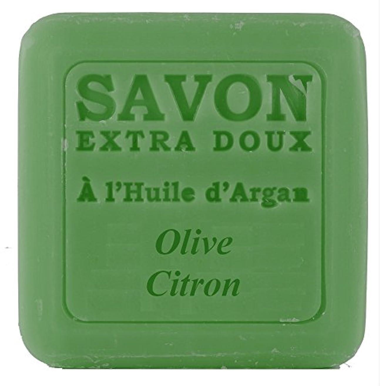 残基プラカード一回Plantes&Parfums [プランツ&パルファム] アルガンオイルソープ100g オリーブレモン