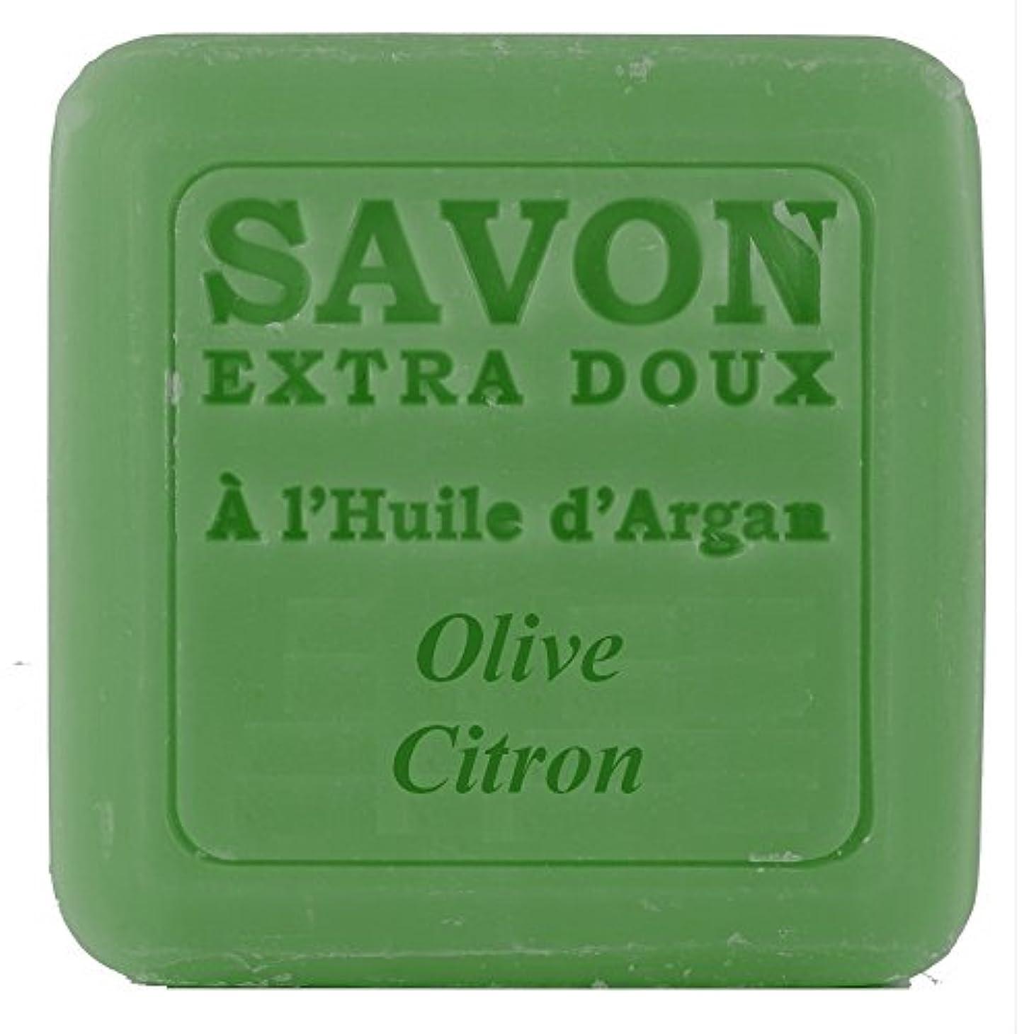 勃起経過シールPlantes&Parfums [プランツ&パルファム] アルガンオイルソープ100g オリーブレモン