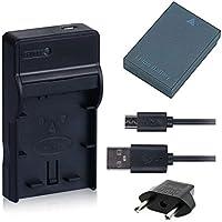 NinoLite 3点セット DMW-BCC12 互換 バッテリー +USB型 充電器 +海外用交換プラグ