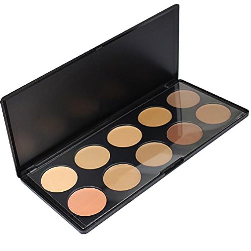 漏斗ハプニング子音メイクアップエーシーシー (MakeupAcc) 10色コンシーラーパレット アイシャドウパレット メイクアップセット [並行輸入品]