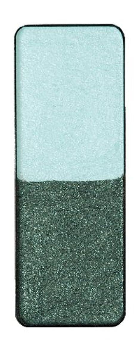 不規則な展示会放棄するヴィザージュ ツインカラー 0905 ライトブルー/ピーコックブラック