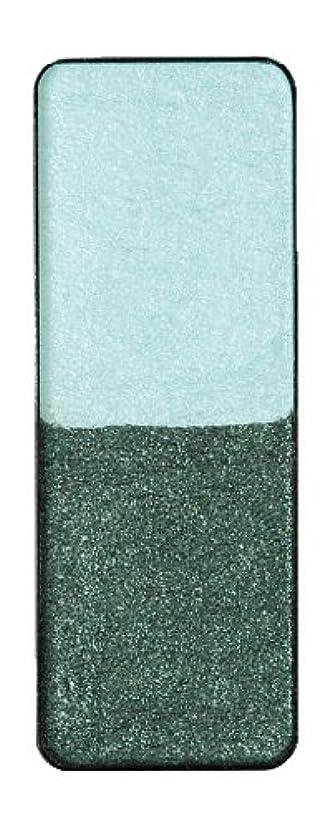 脊椎エゴイズムルネッサンスヴィザージュ ツインカラー 0905 ライトブルー/ピーコックブラック