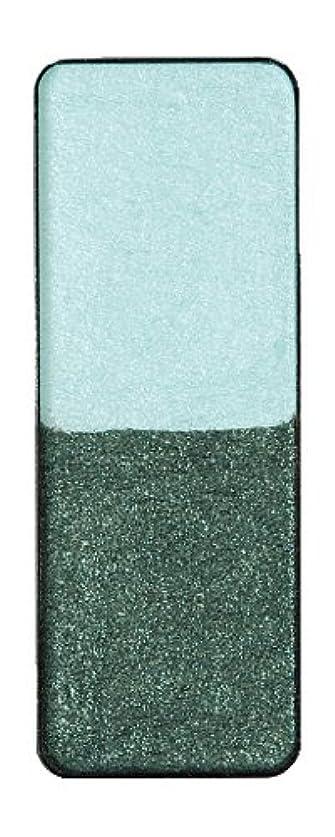 支払う三番論争の的ヴィザージュ ツインカラー 0905 ライトブルー/ピーコックブラック