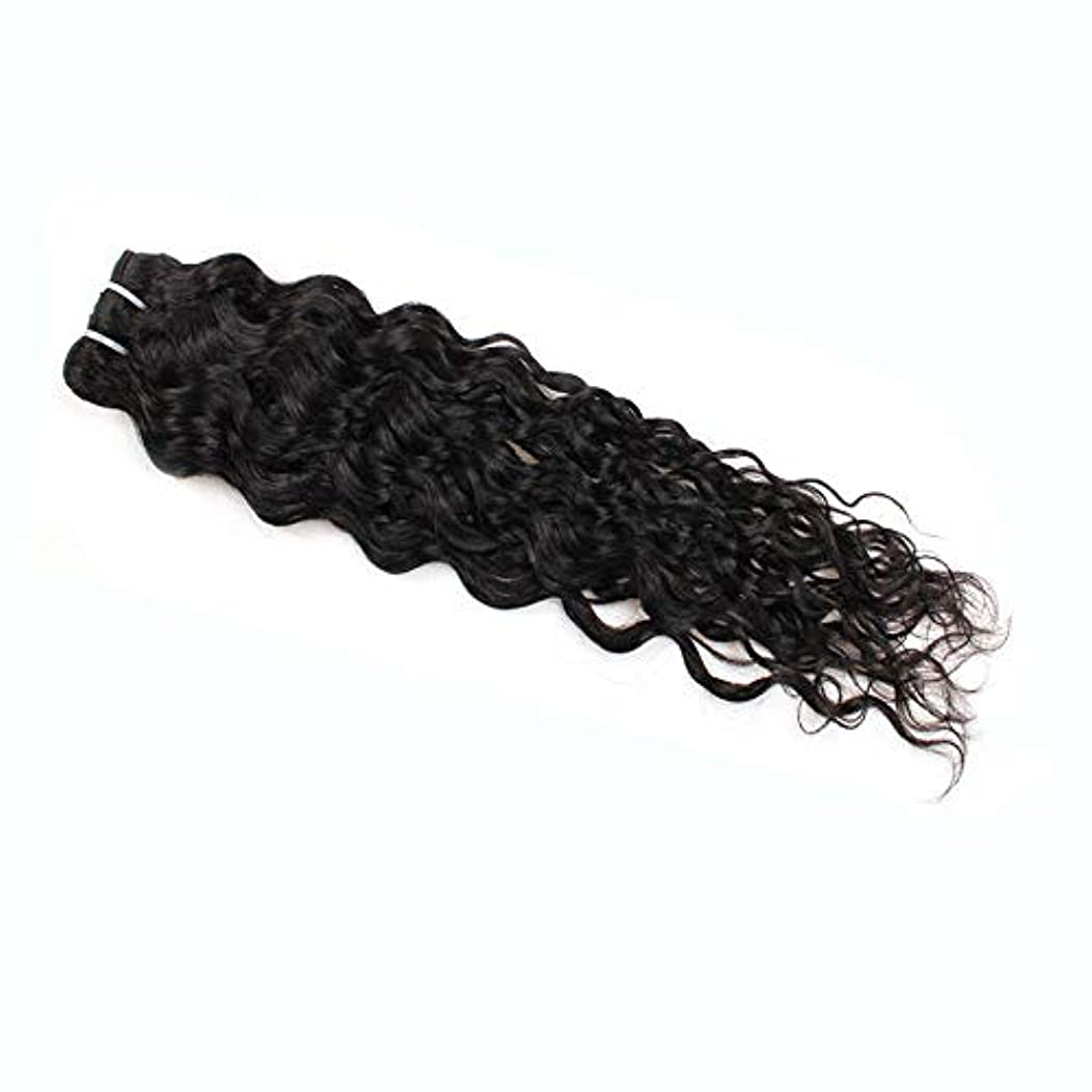 練習やりすぎ丘HOHYLLYA 7a未処理のバージンブラジル髪織り100%ブラジル水波人間の毛髪延長100グラム/バンドルナチュラルカラーパックの1複合ヘアレースかつらロールプレイングウィッグロングとショート女性自然 (色 : 黒, サイズ : 14 inch)