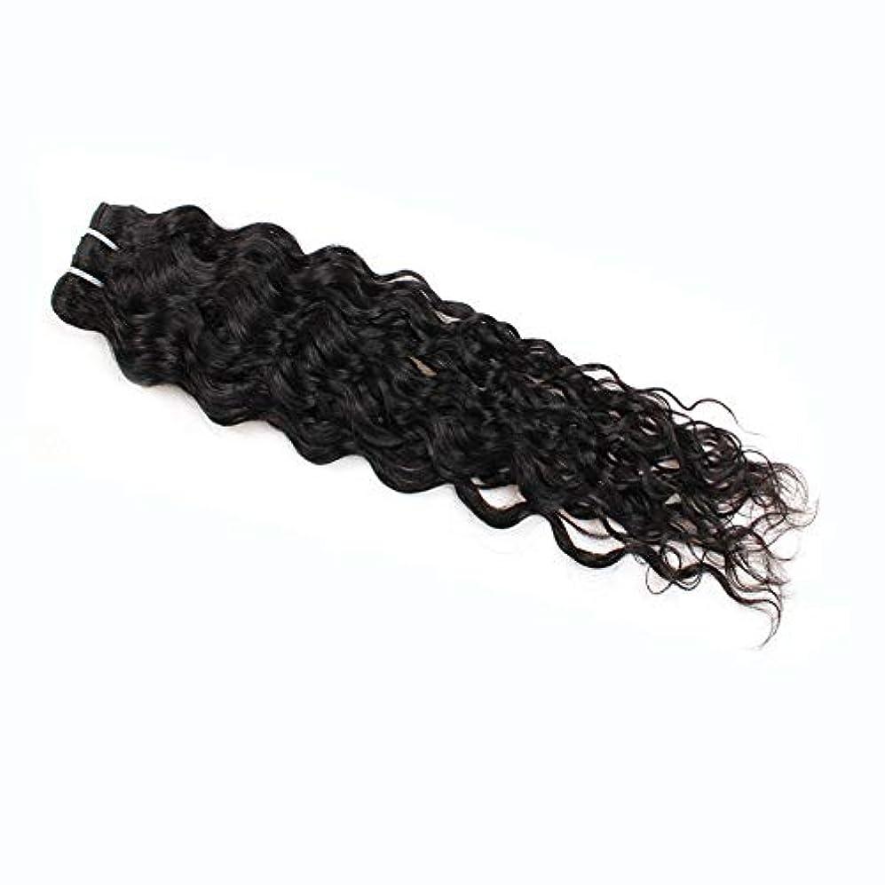 コンピューターを使用する使用法幻想HOHYLLYA 7a未処理のバージンブラジル髪織り100%ブラジル水波人間の毛髪延長100グラム/バンドルナチュラルカラーパックの1複合ヘアレースかつらロールプレイングウィッグロングとショート女性自然 (色 : 黒, サイズ : 14 inch)