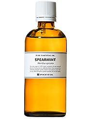 スペアミント 100ml インセント アロマオイル AEAJ 表示基準適合認定精油