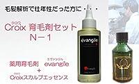 CroixスカルプエッセンスN-1セット Croix育毛剤セットN-1(1ヶ月分)