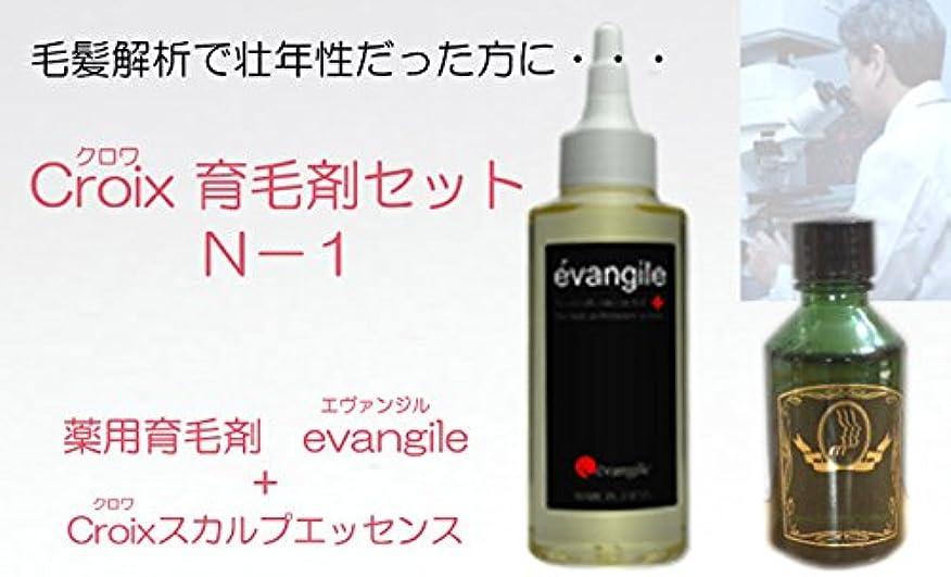 鬼ごっこジョブ艶CroixスカルプエッセンスN-1セット Croix育毛剤セットN-1(1ヶ月分)