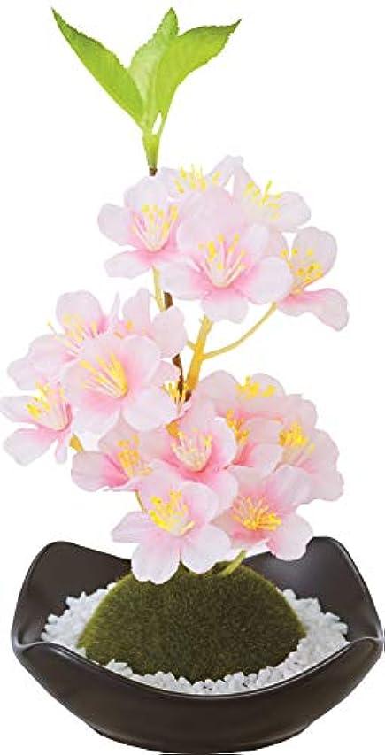 餌開示する染料カメヤマキャンドルハウス 苔玉フレグランス 桜
