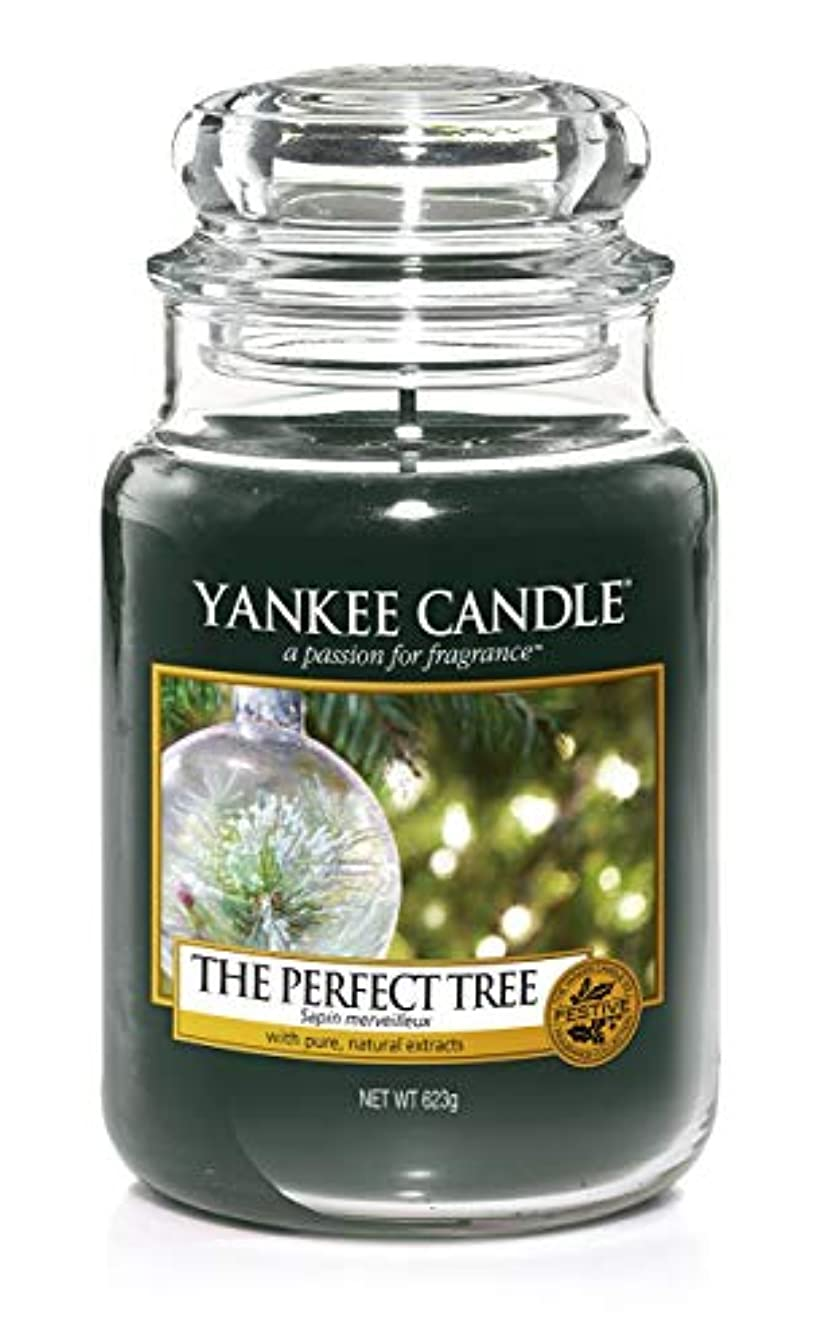 正確な夜の動物園寛大なYankee Candle The PerfectツリーLarge Jar 22oz