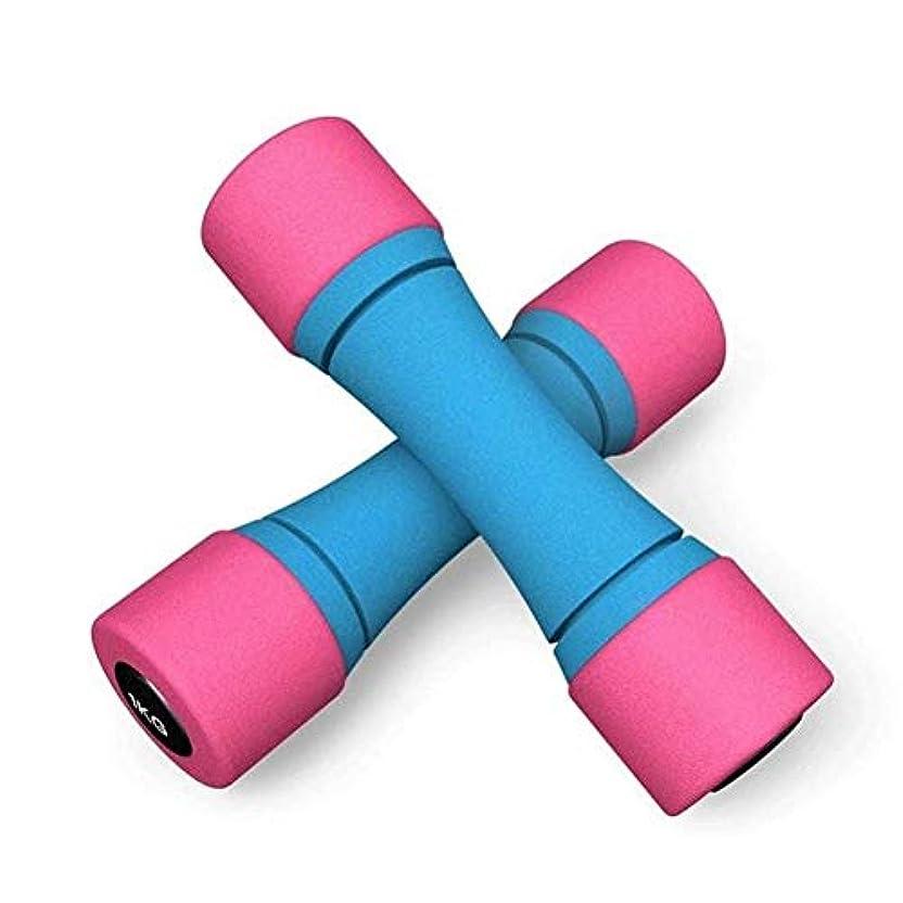 特徴づける農奴予算ダンベル アイアンダンベルメンズ建材家庭用小型ダンベルペアフィットネス機器の耐摩耗性レディース練習腕筋ヨガダンベル (Color : Blue, Size : Free size)