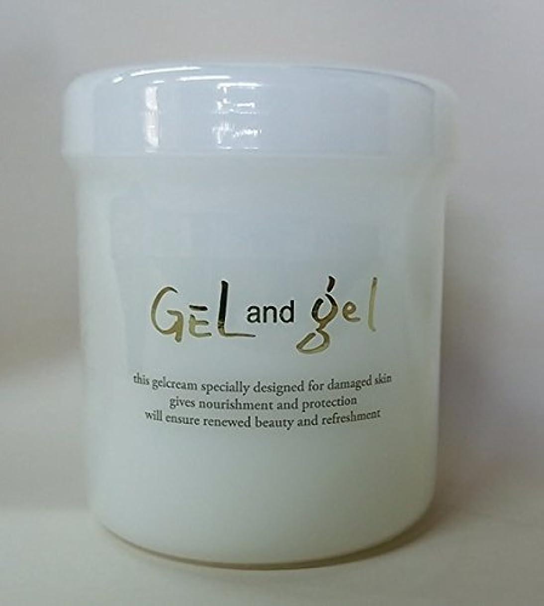 副適合する貢献する天然 ゲルアンドゲル ゲルクリーム 500g レギュラータイプ