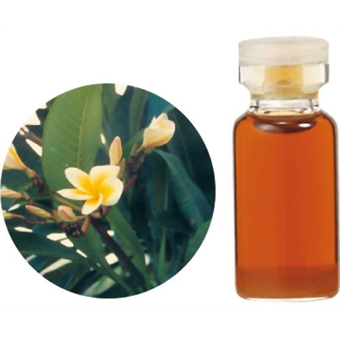 補助変換するオフ生活の木 C 花精油 フランジュパニ アブソリュート (25%希釈) エッセンシャルオイル 3ml