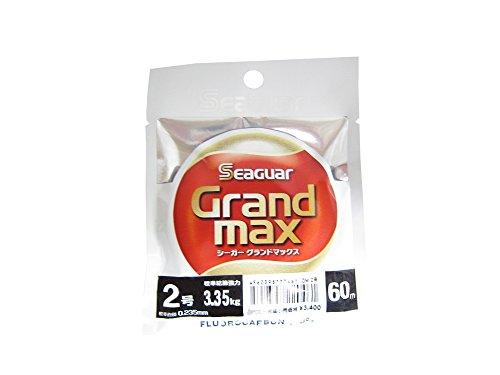 グランドマックス 60m 2号