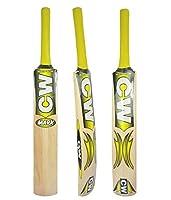 CW Junior Cricket Bat Kashmir Willowサイズno。1